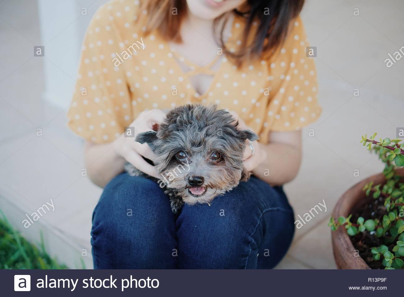 Mittelteil einer Frau sitzt mit ihrem Hund Stockbild