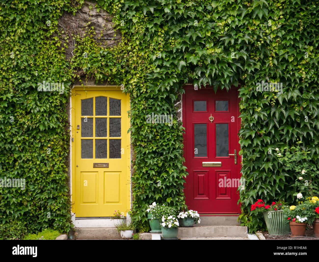 Hausfassade In Irland Mit Efeu Und Zwei Turen In Gelb Und Rot