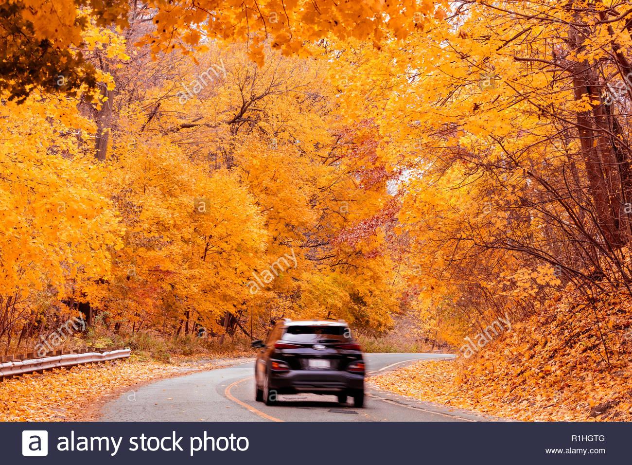 Fahrt Durch Peak Herbst Farbe Strasse Durch Den Ostlichen Laubwaldern