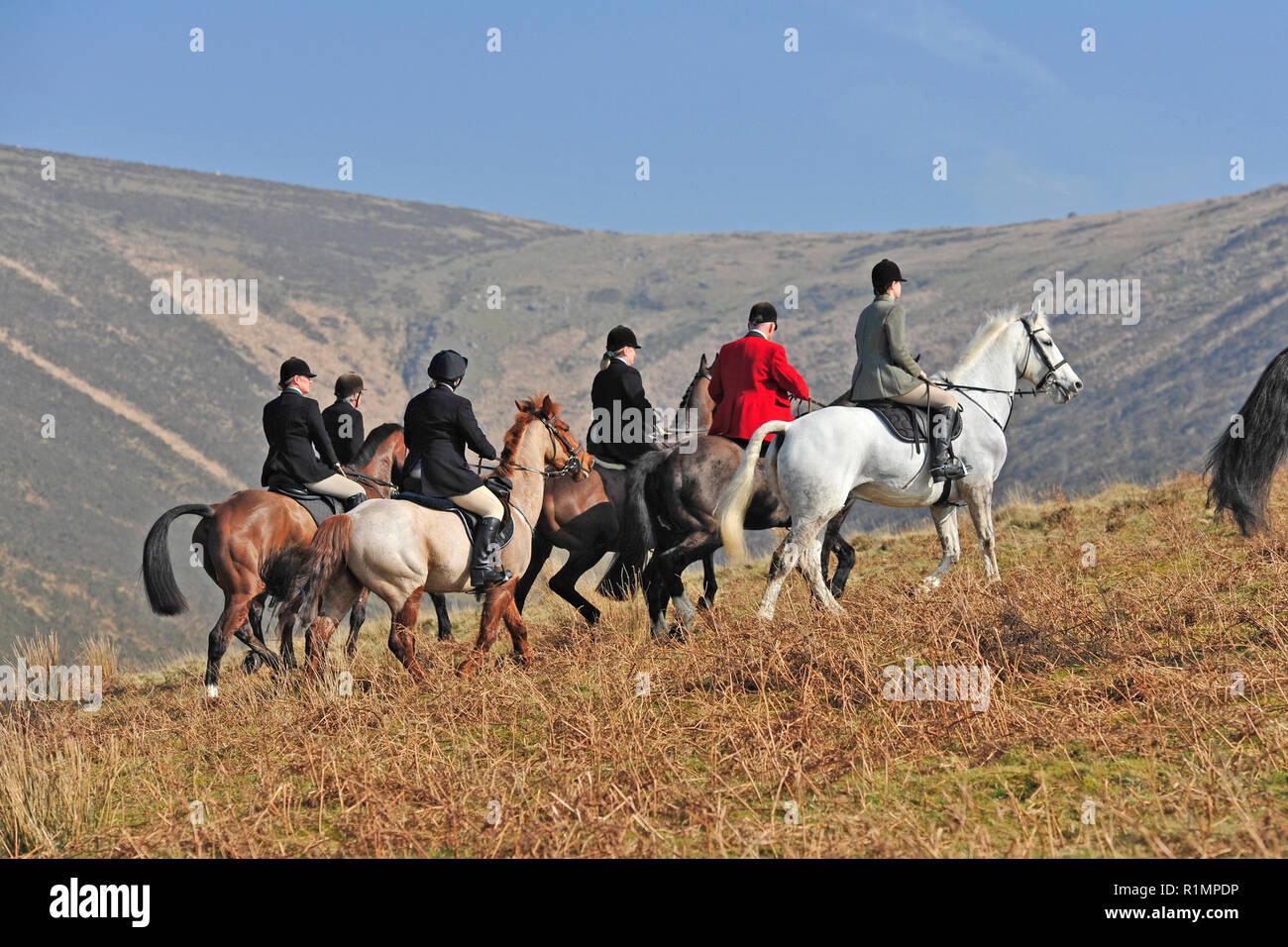 Jagd auf Dartmoor Stockbild