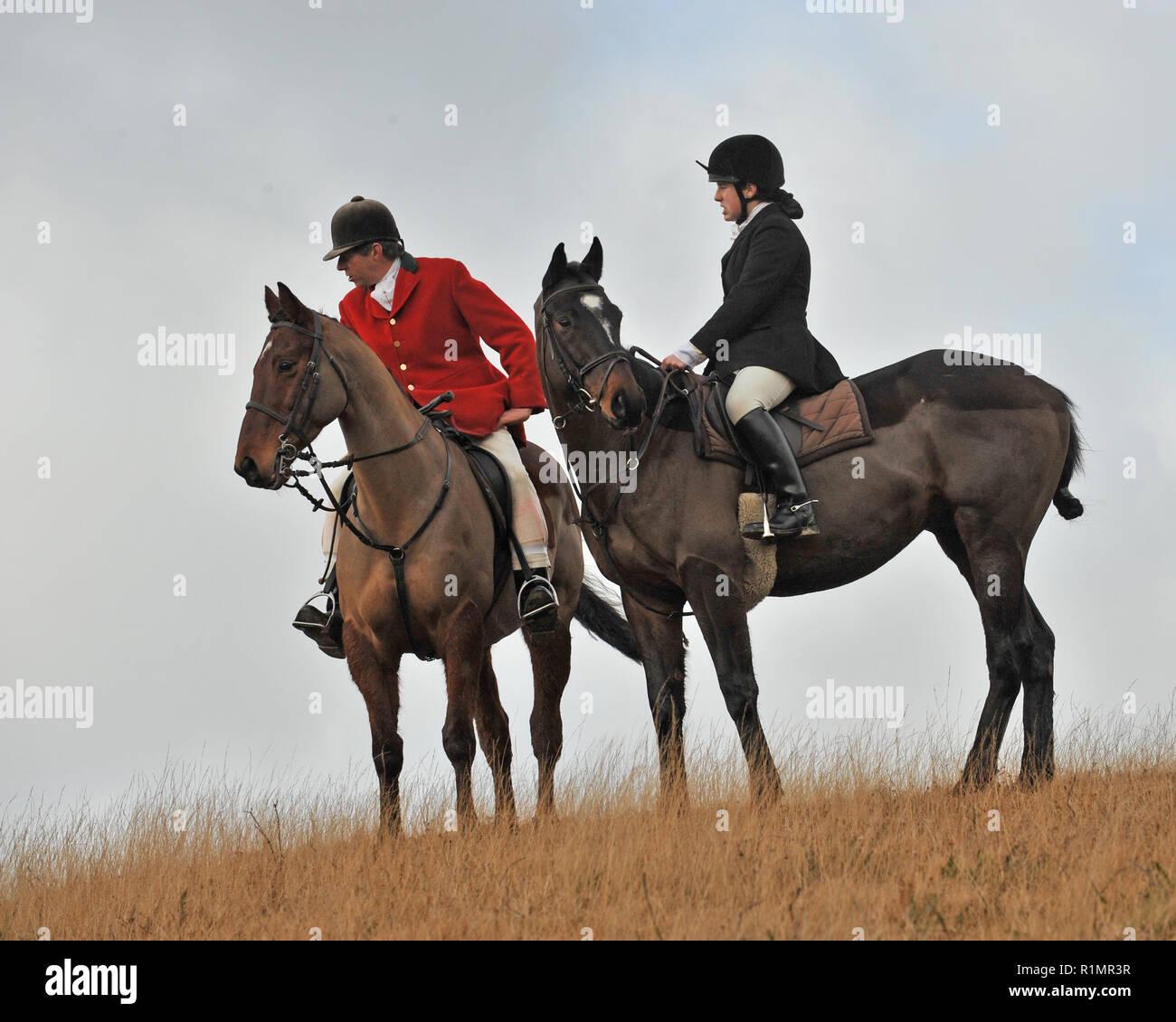 Jäger und Jäger Fuchsjagd Stockbild