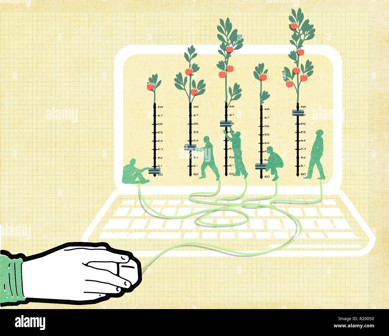 Bewirtschaftung der Wälder Stockbild