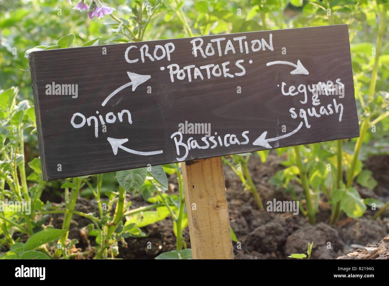 Zeichen, die vier Jahr Fruchtfolge in einem englischen Schrebergarten, Großbritannien Stockbild