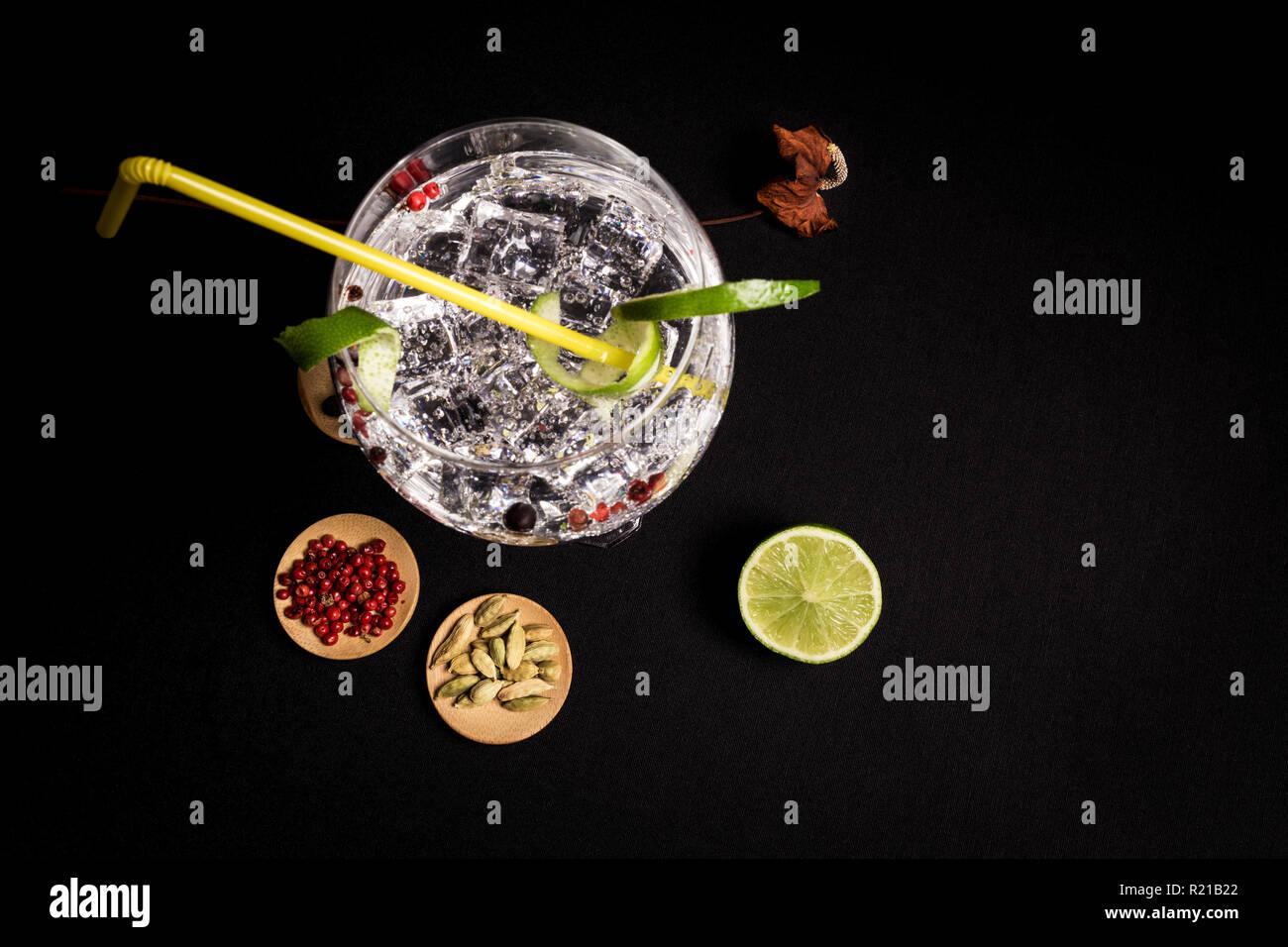 Lecker und frisch Gin und Tonic Cocktail auf einem schwarzen Hintergrund neben ihrem Zutaten Stockbild