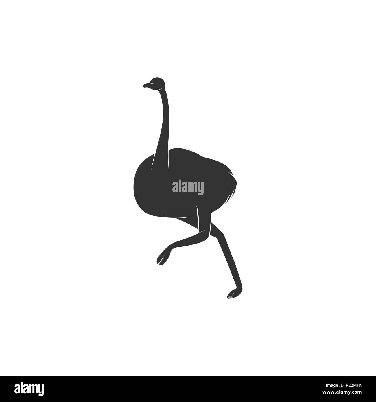 Emu Vogel Läuft Silhouette Auf Weißem Hintergrund Australische