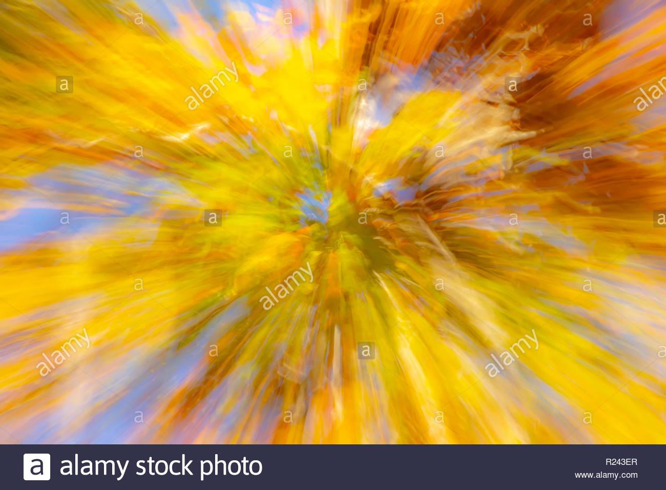 Zusammenfassung Hintergrund In Herbstlichen Farben Strahlen Von