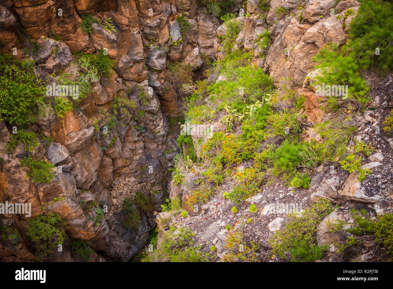 Gefährliche tiefe Schlucht gesehen von oben. Felsen und hohe Loch mit Vegetation. Entdecken und trekking Konzeption für Menschen mutig. wilde Natur Outdoor Stockbild