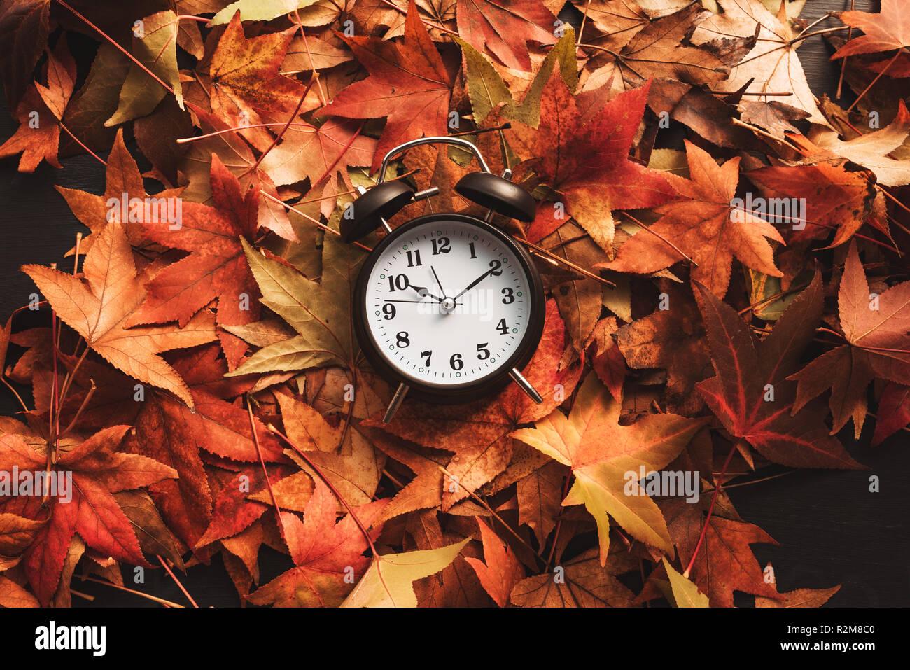 Herbst Zeit, Retro Vintage Wecker in trockenen Herbstlaub - Sommerzeit Konzept Stockfoto