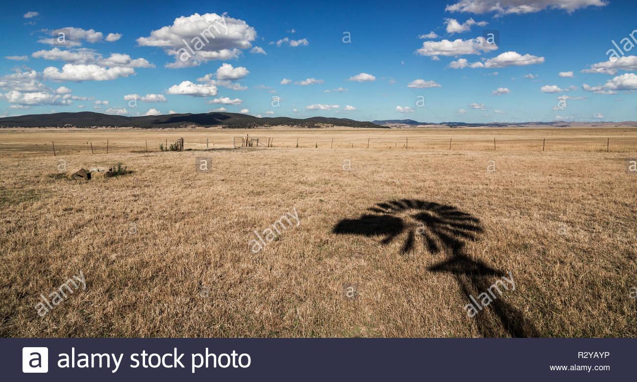 Der Schatten einer Wasserpumpe Mühle über das trockene Gras von der Dürre betroffenen Ackerland am Lake George, im südlichen New South Wales. Stockbild