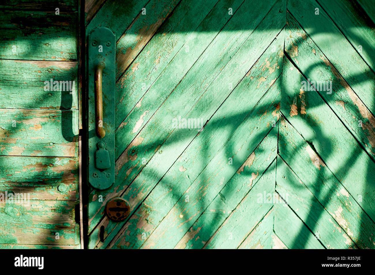 Alten grünen Tür oder Wand eines Holz- Haus im rustikalen Stil, mit abblätternder Farbe. Der Schatten eines schmiedeeisernen Bars, schwarze und weiße Zeichnung Stockbild