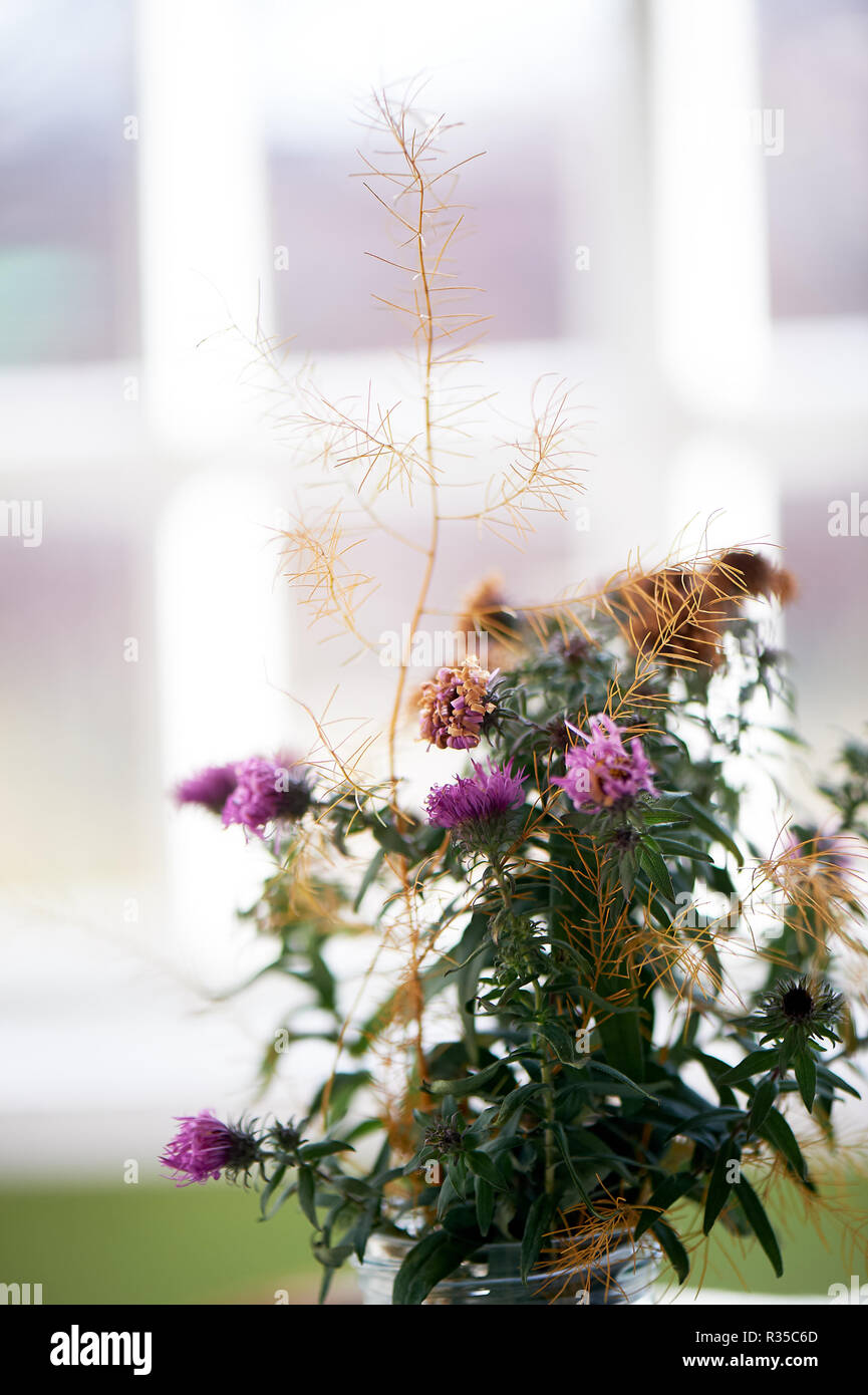 Blumenstrauß von wilden Blumen und getrockneten Blumen. Schließen Stockbild