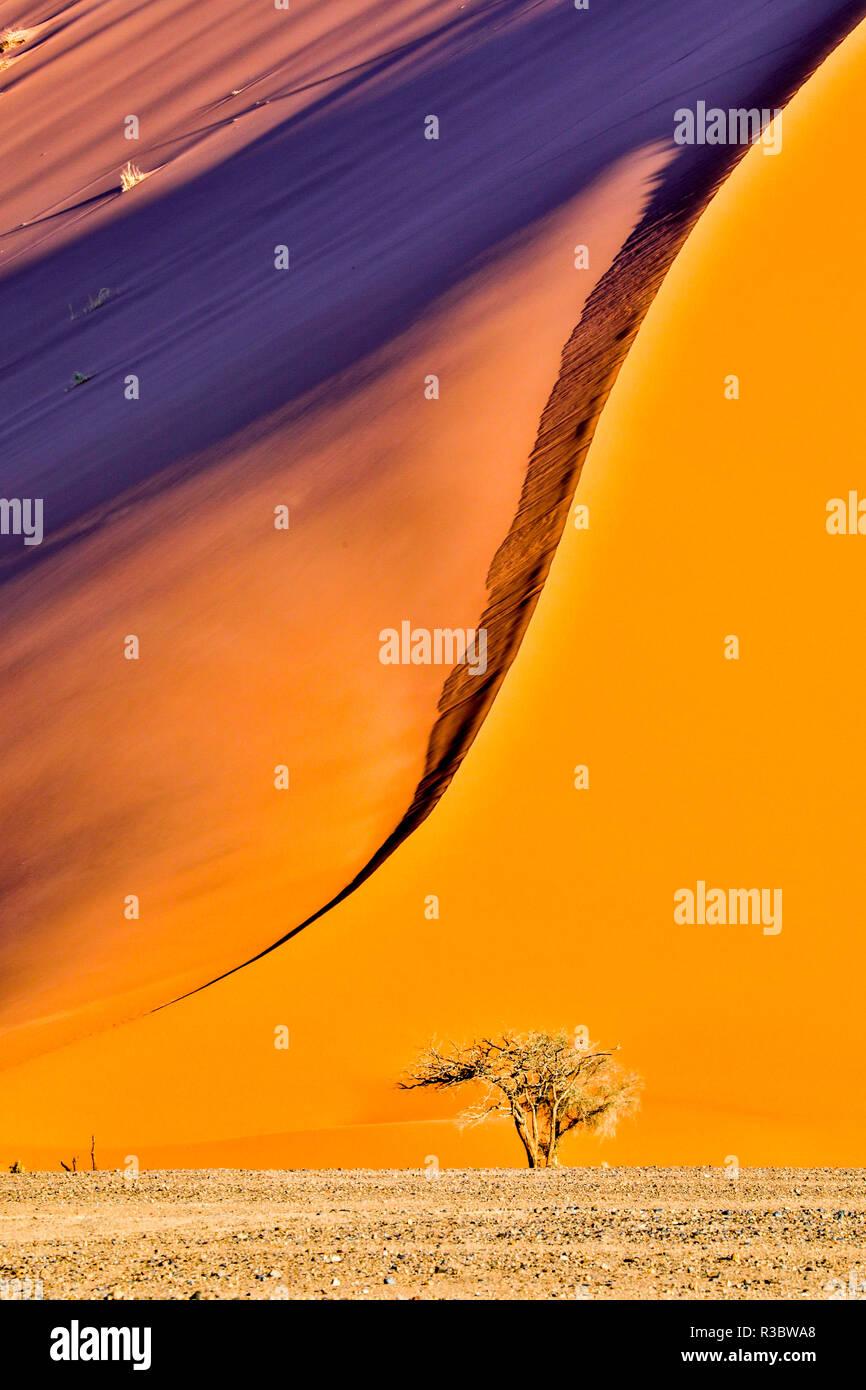 Afrika, Namibia, Sossusvlei Dünen am Nachmittag Licht Stockbild