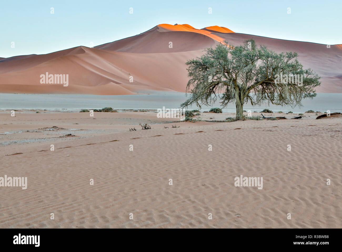 Afrika, Namibia, Sossusvlei Dünen Stockbild