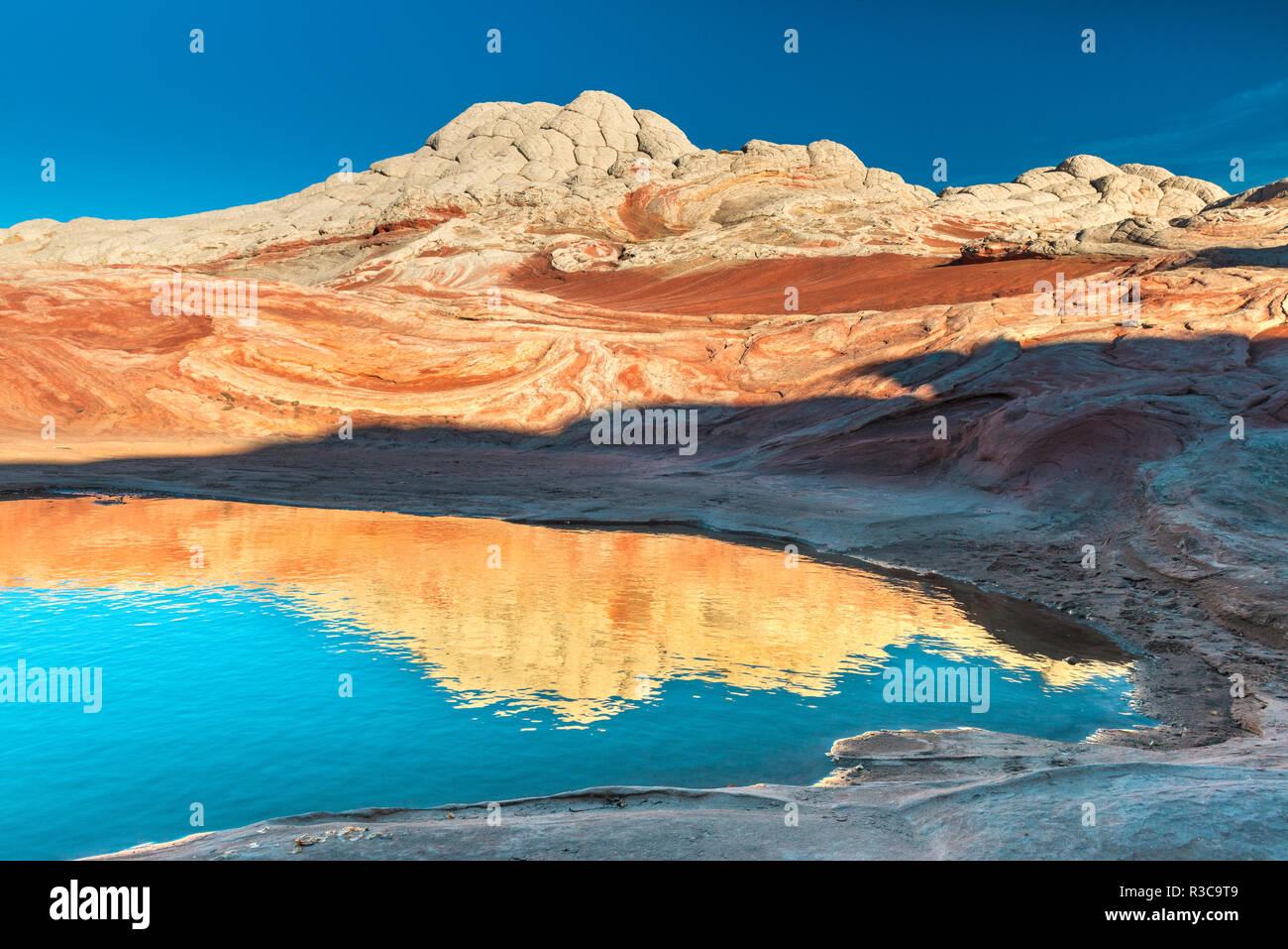 Pool Reflexion und Sandstein Landschaft, Vermillion Cliffs, weißen Taschen Wüste, Büro des Land-Managements, Arizona Stockbild