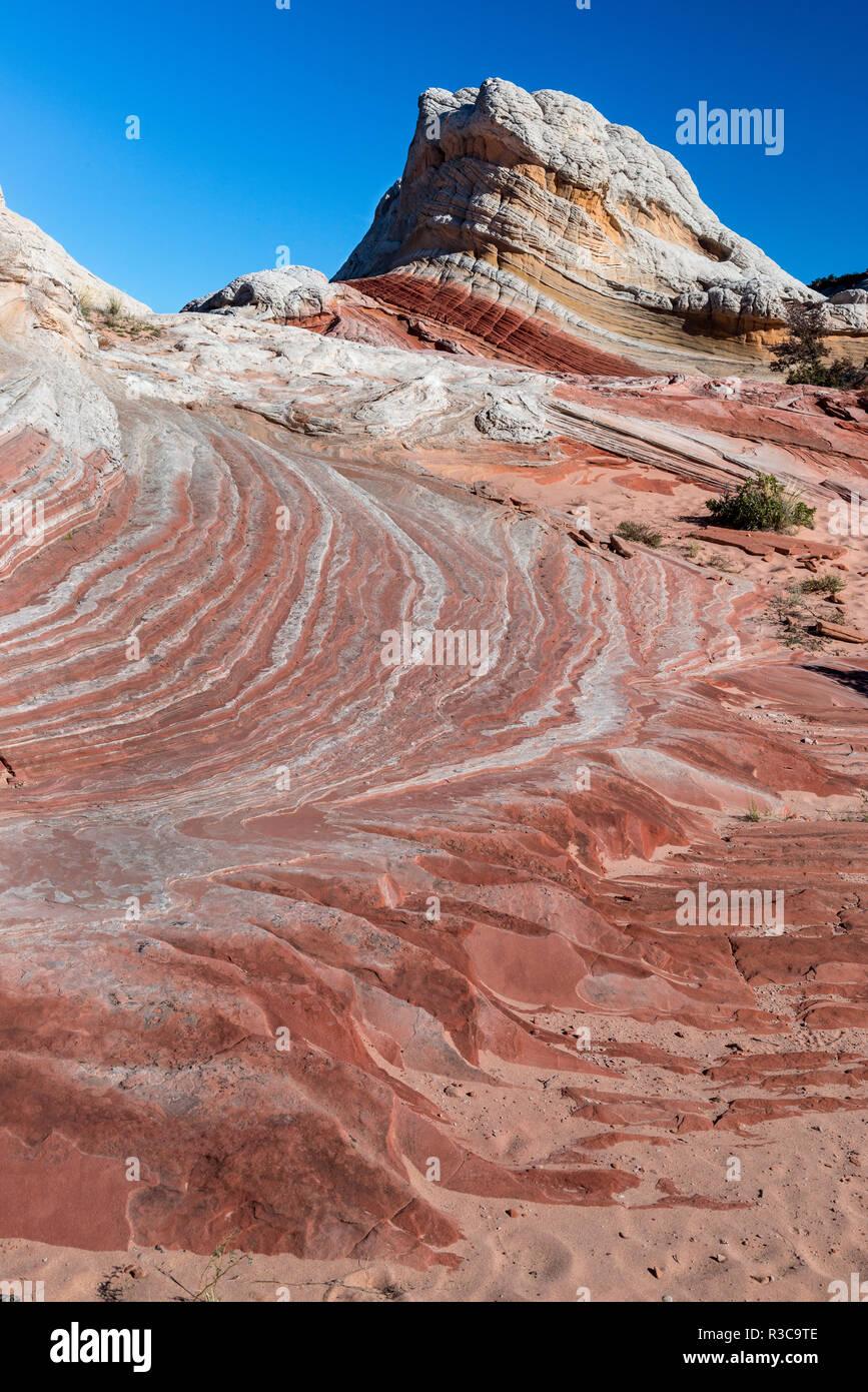 Sandstein Landschaft, Vermillion Cliffs, White Pocket Wüste, Büro des Land-Managements, Arizona Stockbild