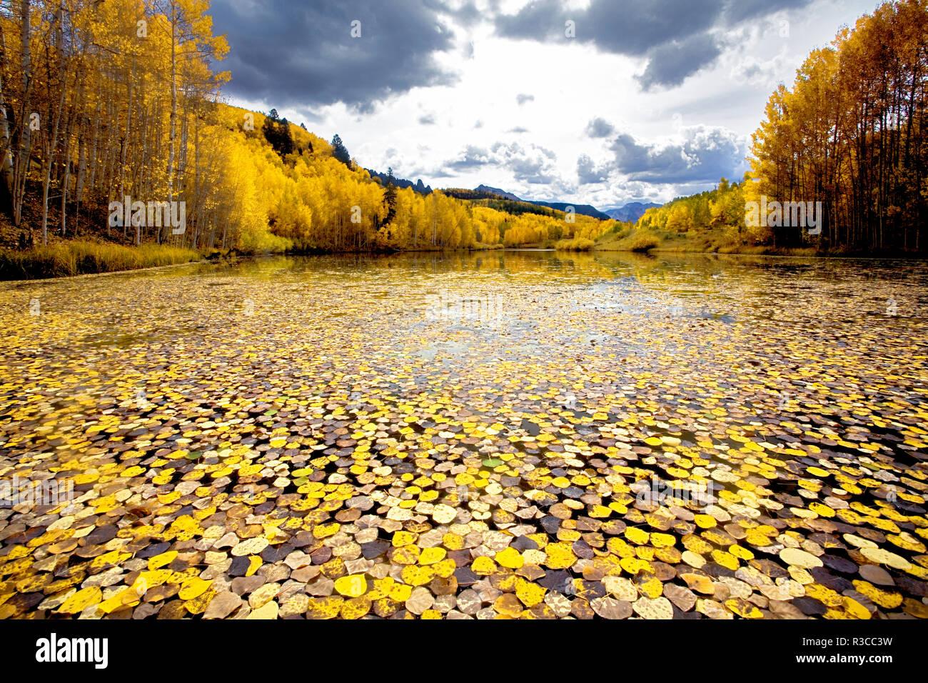 USA. Colorado, Uncompahgre National Forest, Herbst, Teich Stockbild