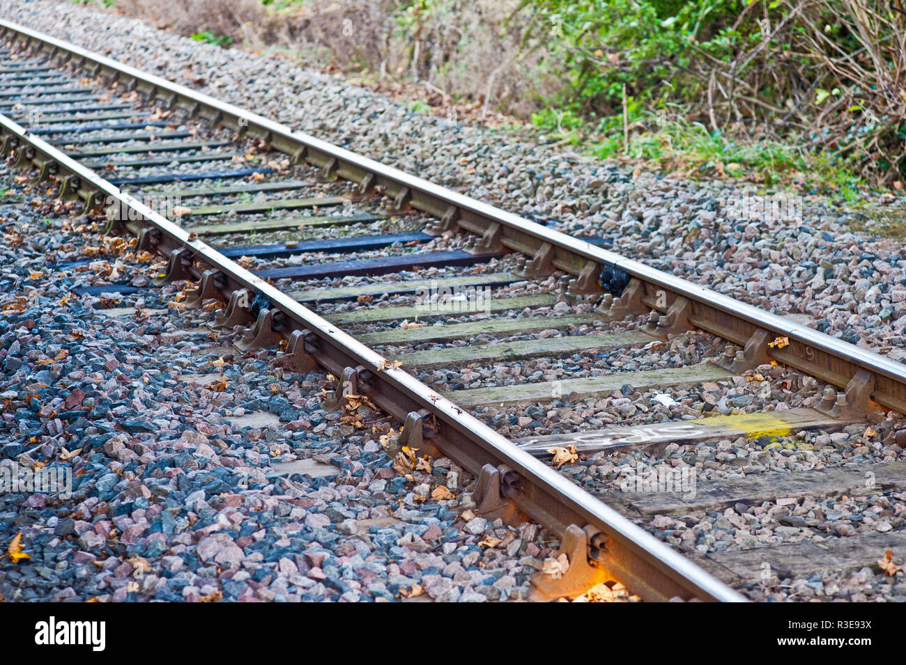 Laub auf den Schienen, Bahnlinien, Eisenbahninfrastruktur, Wartung, Great Ayton Bahnhof, North Yorkshire, England Stockbild