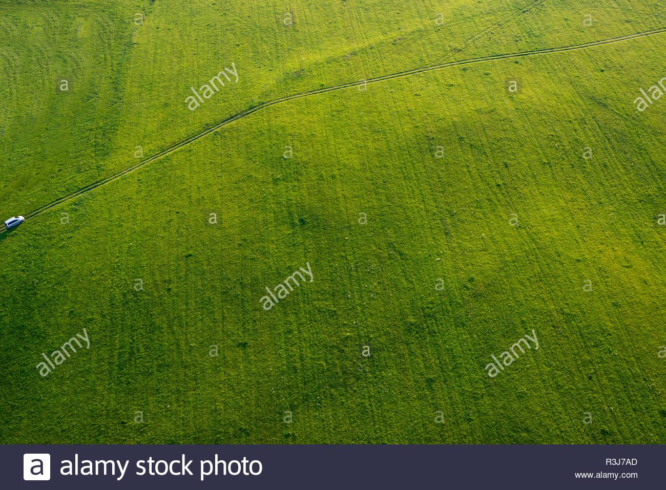 Grüne saftige Wiese aus der Luft Stockbild