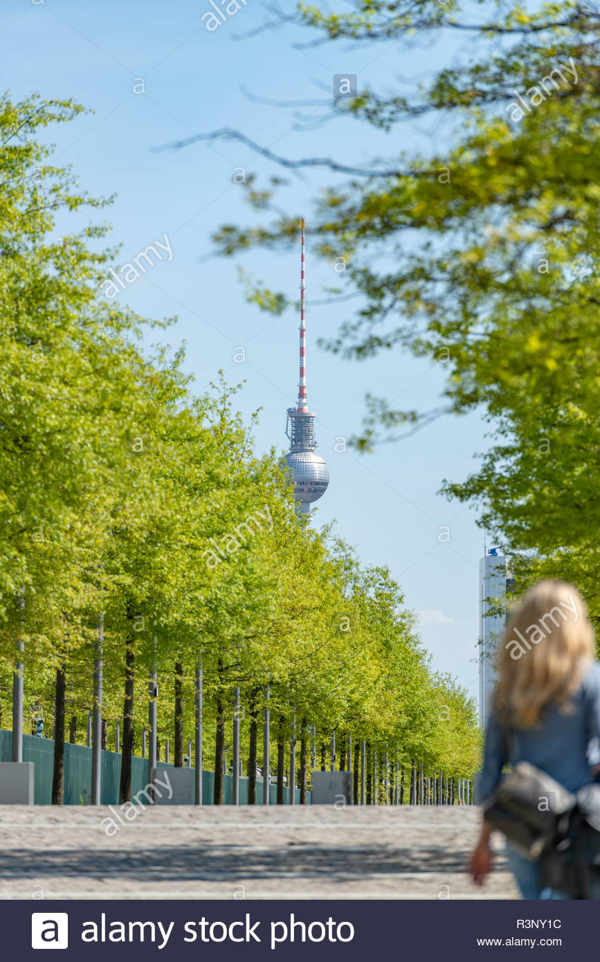 Fernsehturm in Berlin. Im Vordergrund befindet sich eine Allee. Stockbild