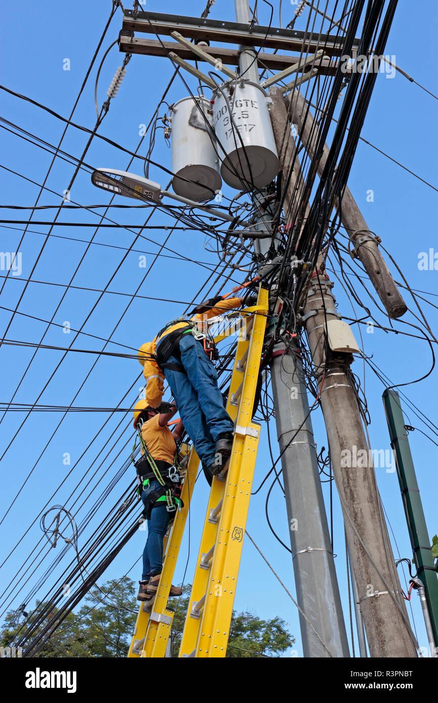 Zwei elektrische Energieverteilung Arbeiter, ein Männchen, ein Weibchen, Leitern, das Tragen von Kabelbäumen, Austausch eines Holz- Telegraphenmast mit Stahl eine auf Stockbild