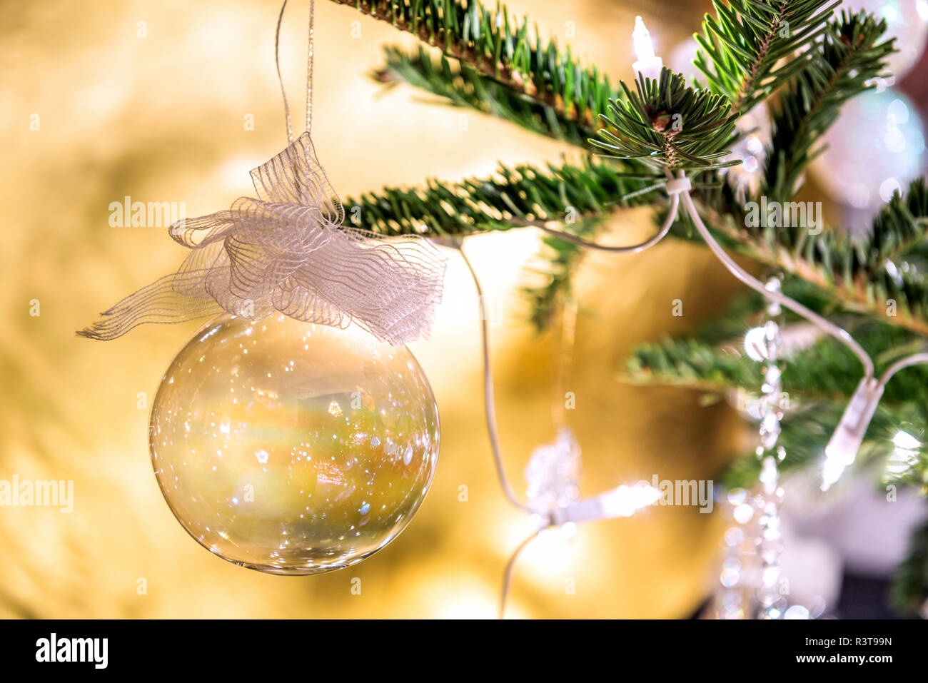 Tanne Zweig mit transparenten Weihnachtskugel, close-up Stockbild