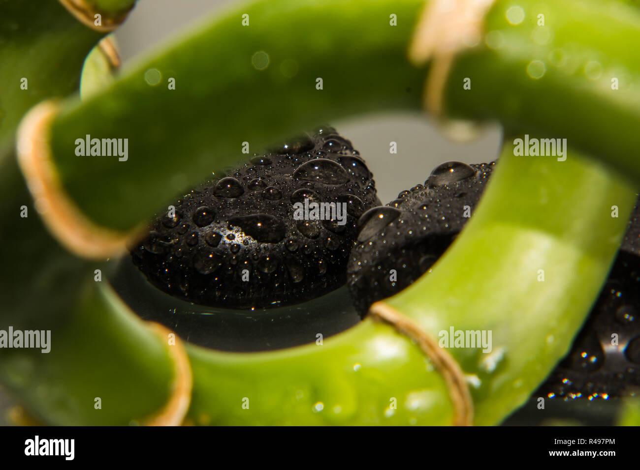 Wassertropfen Mit Steinen Und Bambus Stockfoto Bild 226397100 Alamy