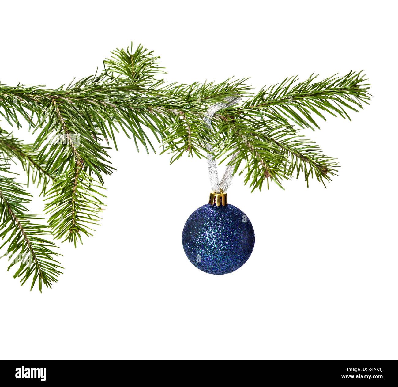 Blue Christmas Ball Dekoration aufhängen auf pine Zweig auf weißem Hintergrund Stockbild