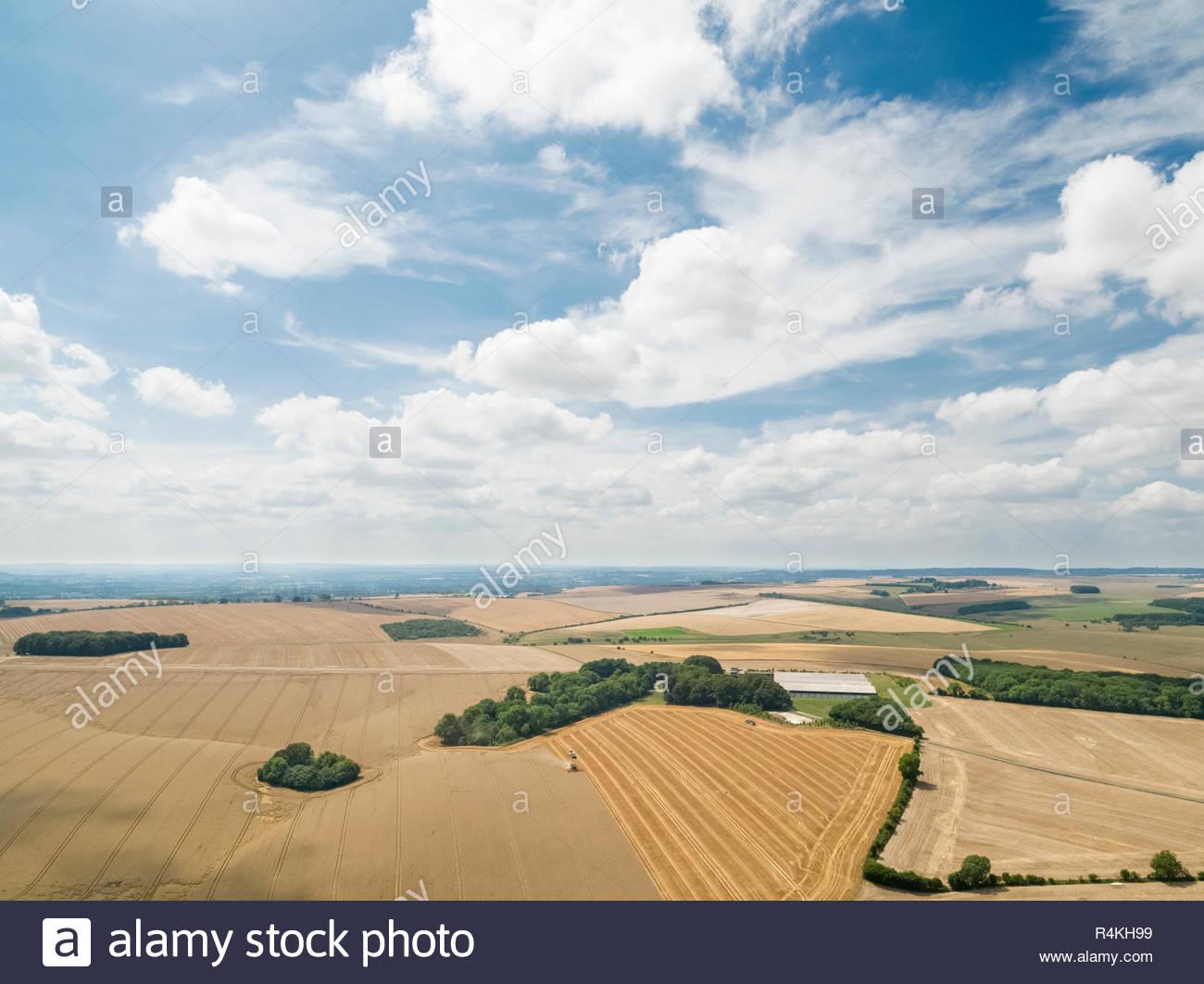 Ernte Landschaft Antenne von Mähdrescher schneiden Sommer Weizenfeld Ernte mit Traktoren Anhänger unter blauem Himmel auf der Farm Stockfoto