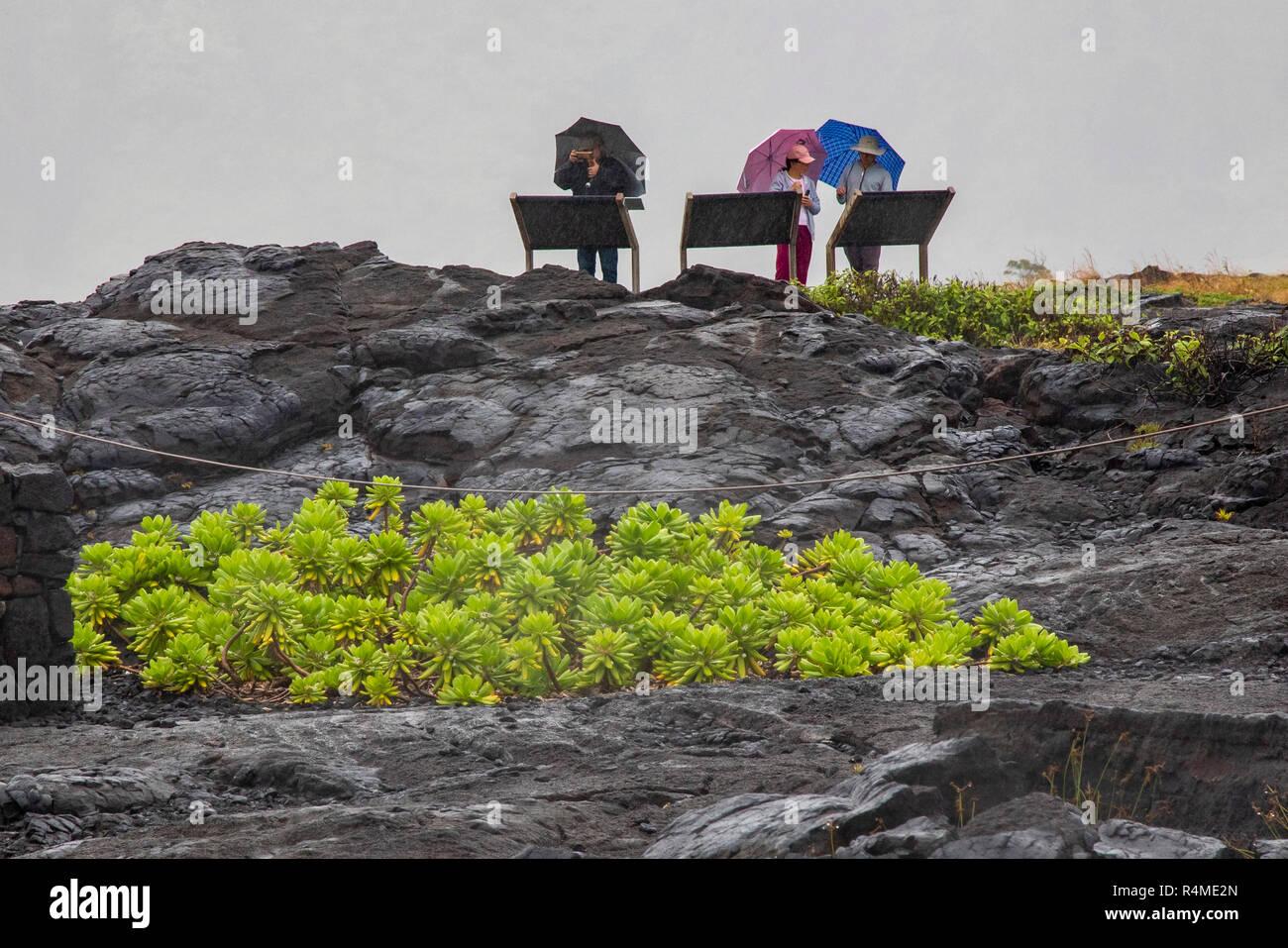 Hawaii Volcanoes National Park, Hawaii - Touristen Schutz unter Sonnenschirmen beim Lesen der National Park Service Informationen am Ende der Kette von C Stockbild