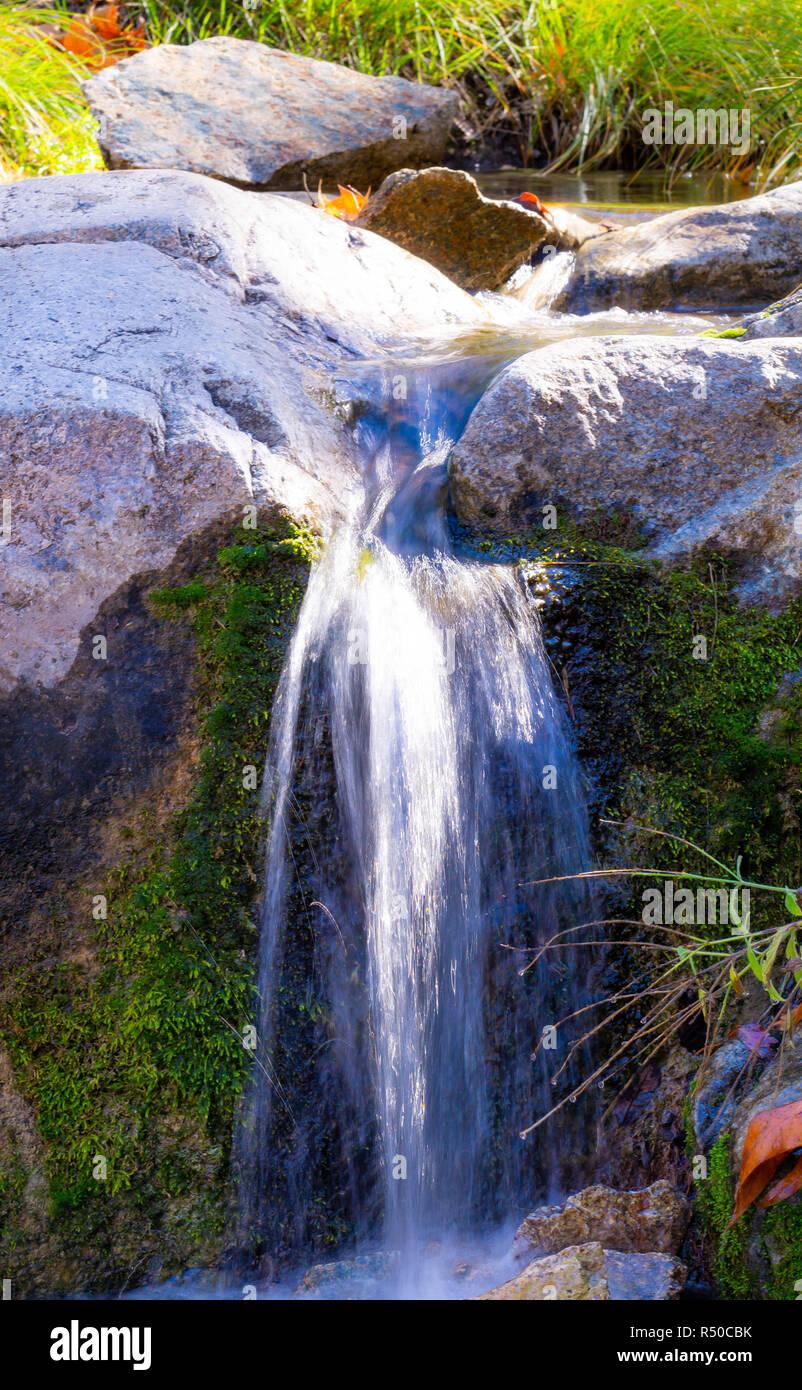 Kleiner Wasserfall in Madera Canyon Stockfoto, Bild