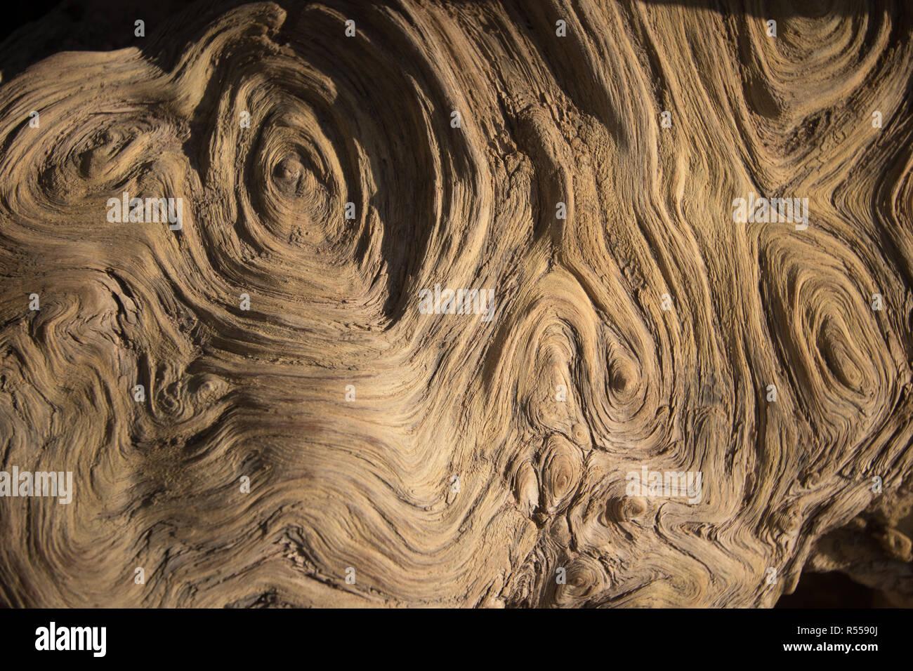 Holzformen eines Baumes Linien und Kreise Stockbild
