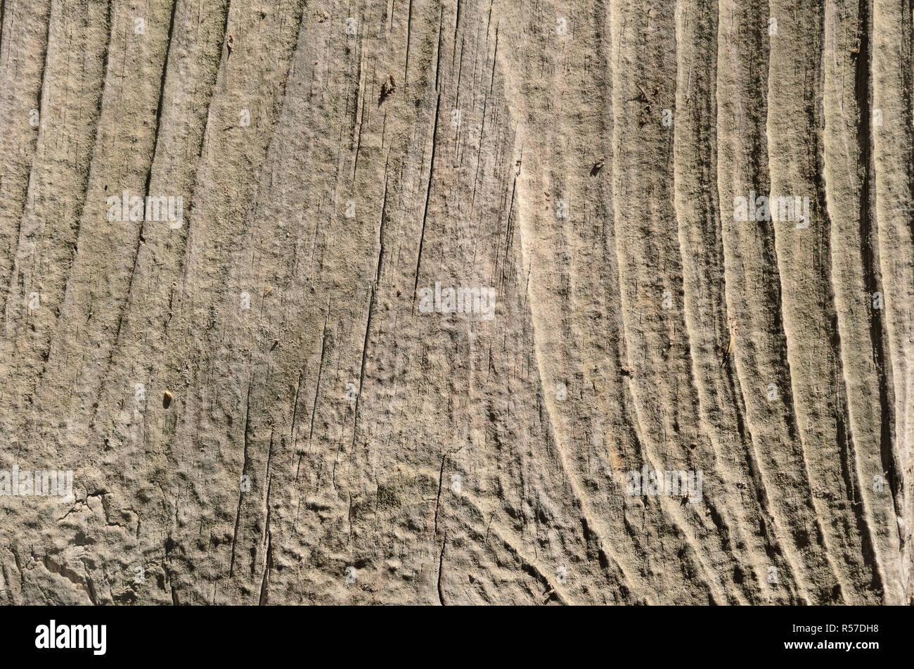 Licht Holz Textur. Zusammenfassung Hintergrund Stockfoto ...
