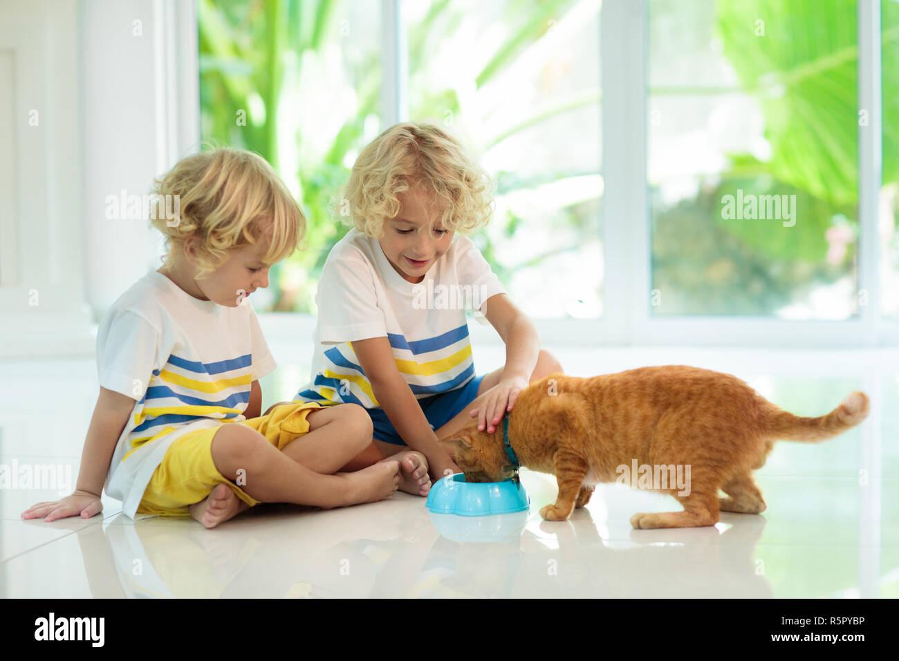Kind Katze Zu Hause Kind Und Haustier Kleine Blonde Lockige Junge