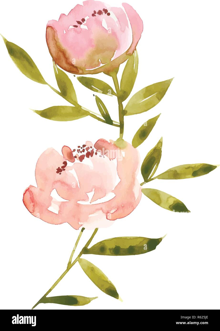 Blumen Aquarell Vector Illustration Mutter S Tag Hochzeit
