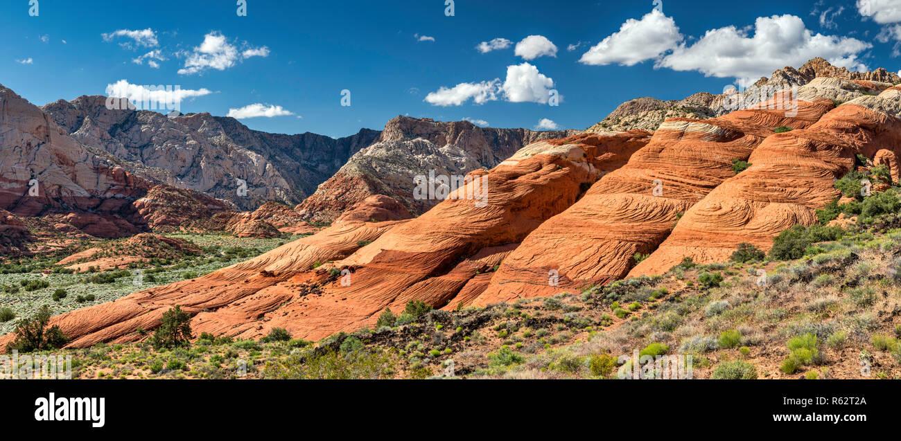 Crossbedded Navajo Sandsteinfelsen, West Canyon im Abstand von Lava Flow Trail bei Snow Canyon State Park, Utah, USA gesehen Stockbild