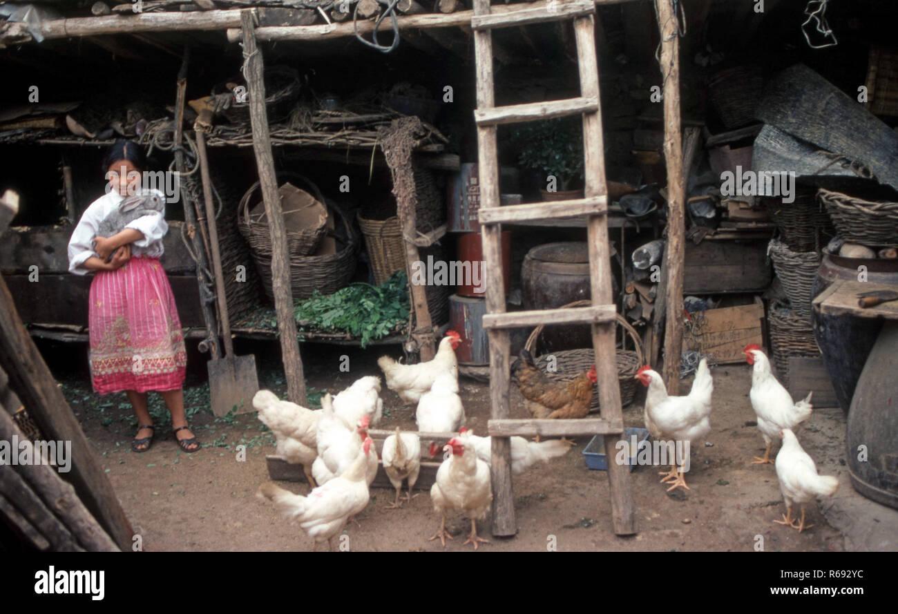 Northern China 1980 Gemeinde in der Provinz Waoning junge Mädchen unter die Hühner halten eine große Kaninchen Stockfoto