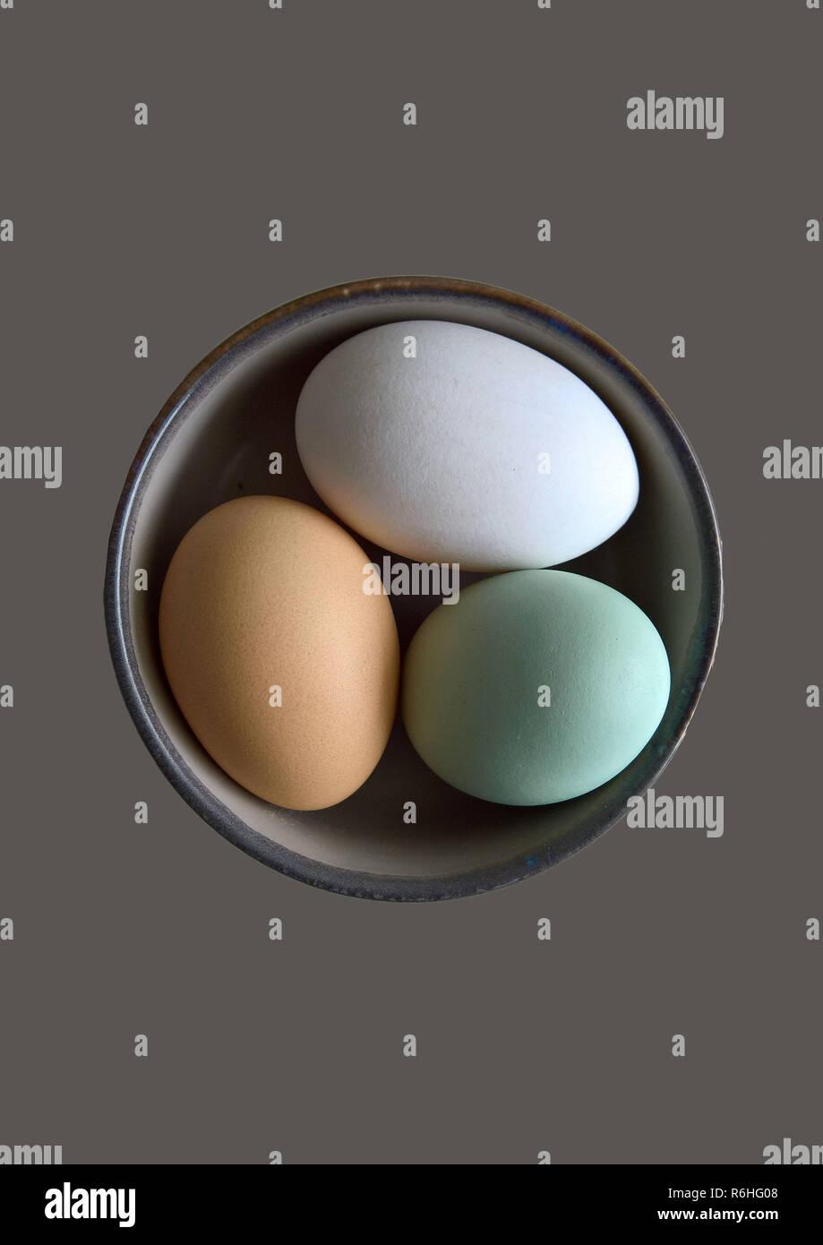 Bio Eier Stockbild