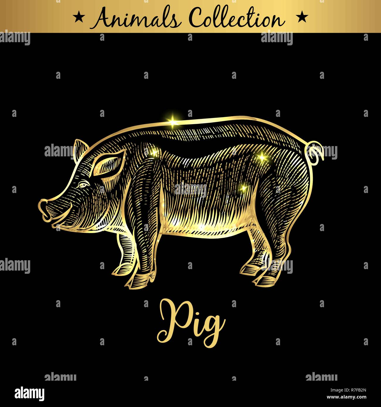 butcher pig illustration stockfotos butcher pig. Black Bedroom Furniture Sets. Home Design Ideas