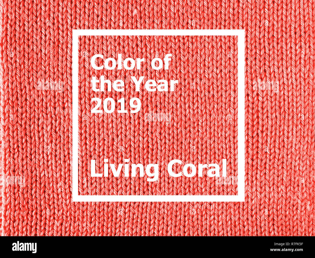 koralle strickpullover stockfotos koralle strickpullover bilder alamy. Black Bedroom Furniture Sets. Home Design Ideas