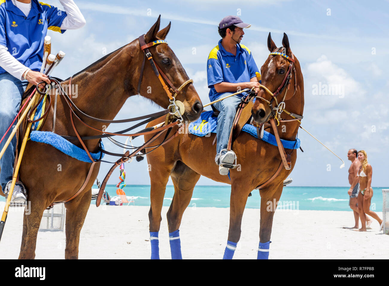Miami Beach, Florida Polo World Cup Spiele Sport Turnier Reiterfall sand Feld Horse Pony Bräutigam trainer Hispanic Mann nicht Stockfoto