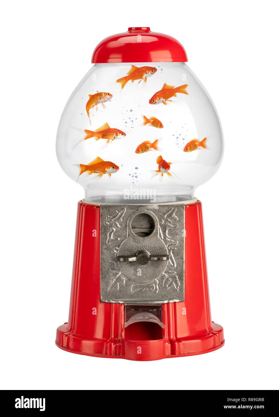 Konzept der Verkauf von inländischen goldener Fisch durch vintage Münze Automaten mit Aquarium Stockbild
