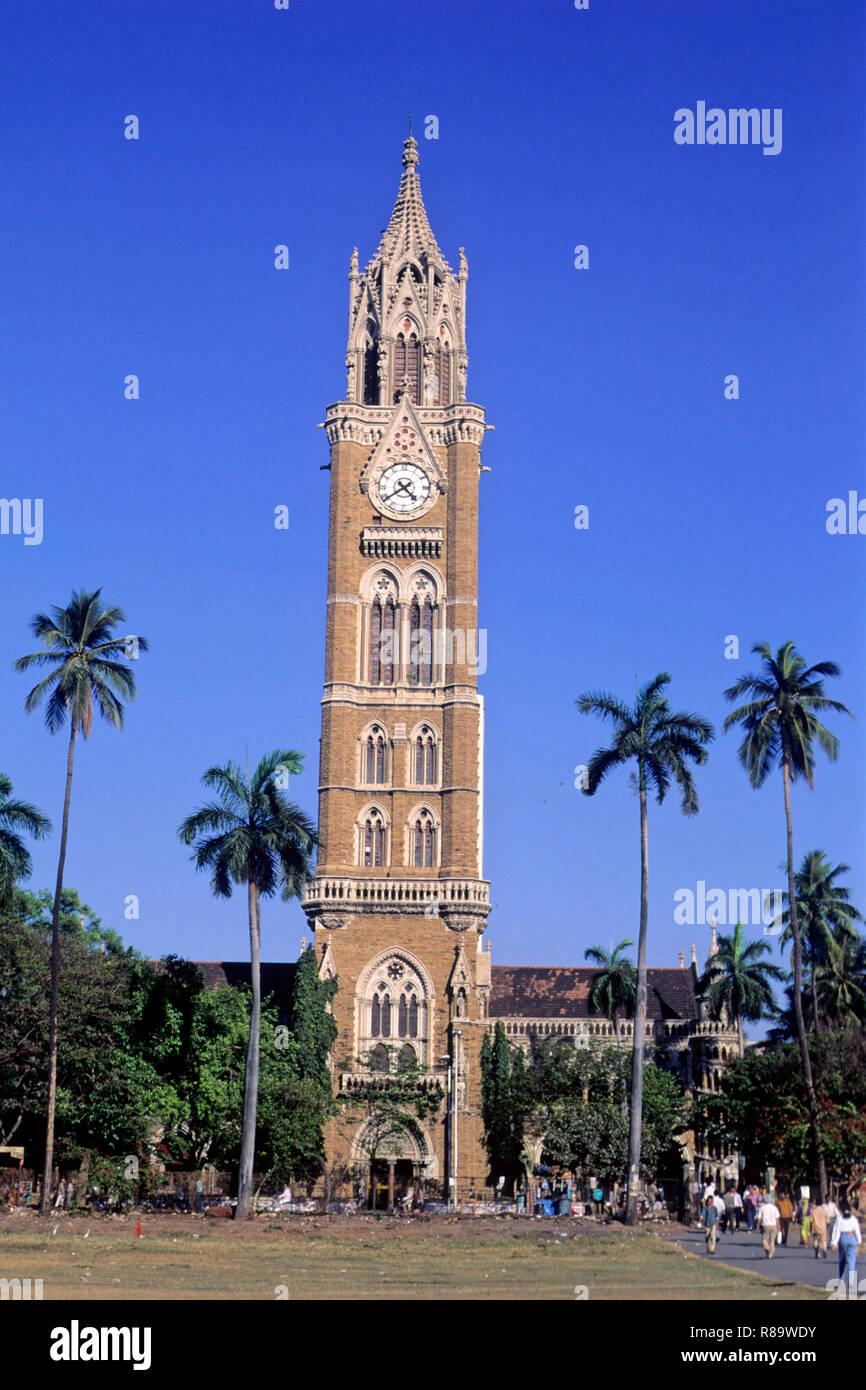 Rajabhai Tower Oval Maidan, Churchgate, Bombay Mumbai, Maharashtra, Indien Stockbild