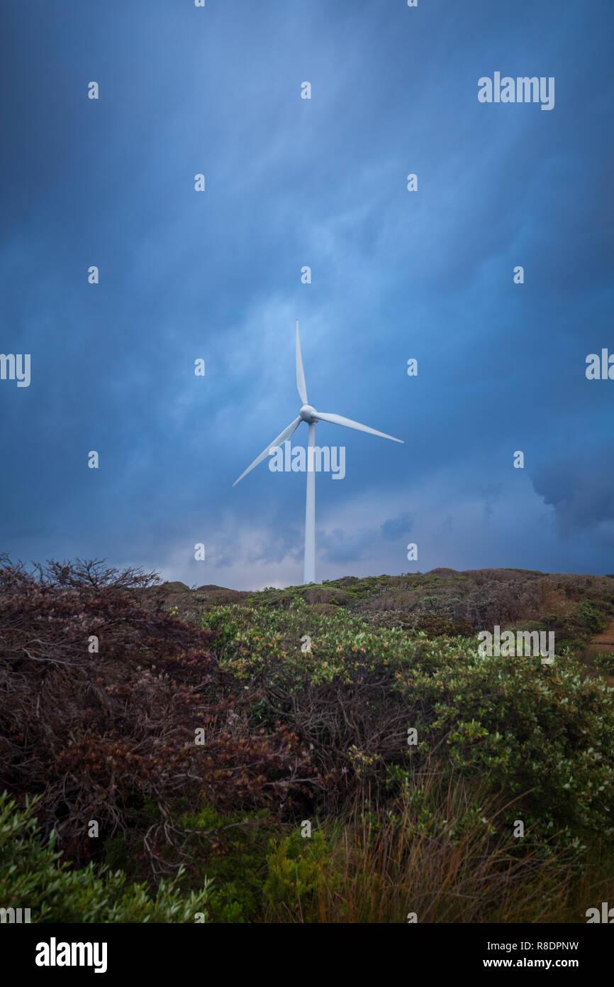 Albany Windpark, Western Australia Stockbild