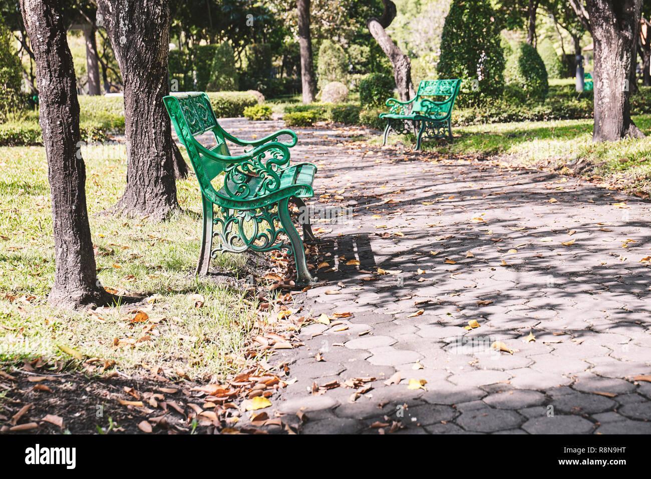 Leeren Alten Grünen Sitzbank Im Garten Mit Warmen Sonnenlicht Relax