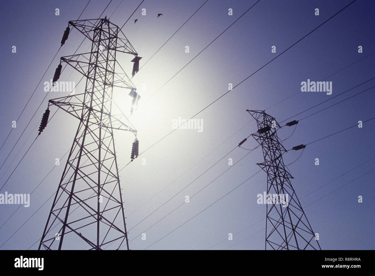 Elektrische Stromleitungen, Bombay, Mumbai, Maharashtra, Indien Stockbild