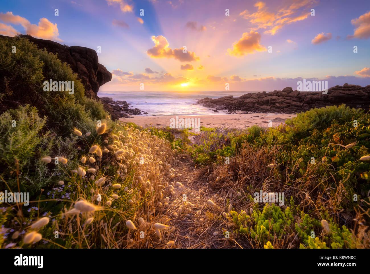 Verträumt beachscape Stockbild