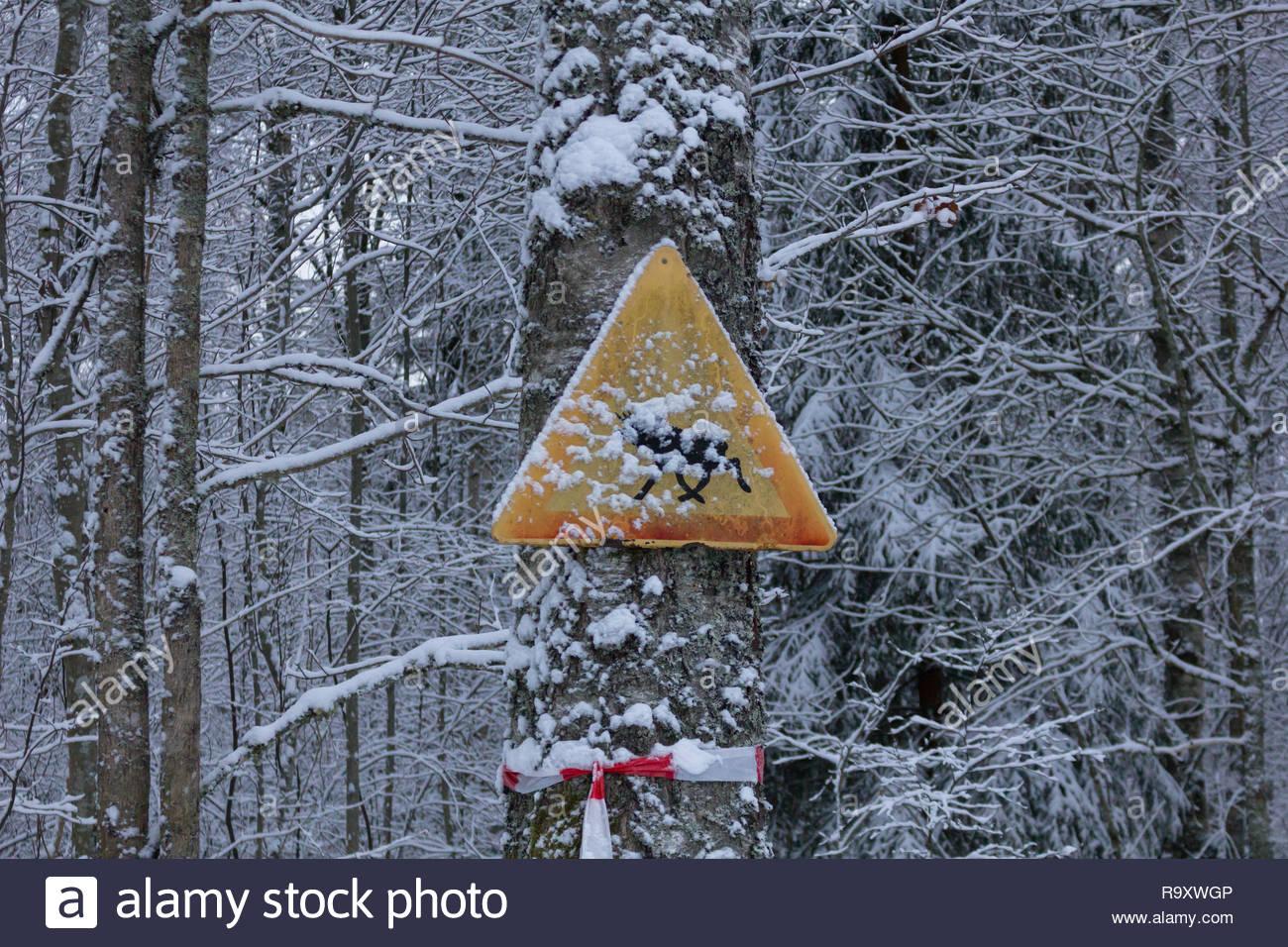 Warnzeichen für die Kreuzung Elche mit Schnee bedeckt Stockbild