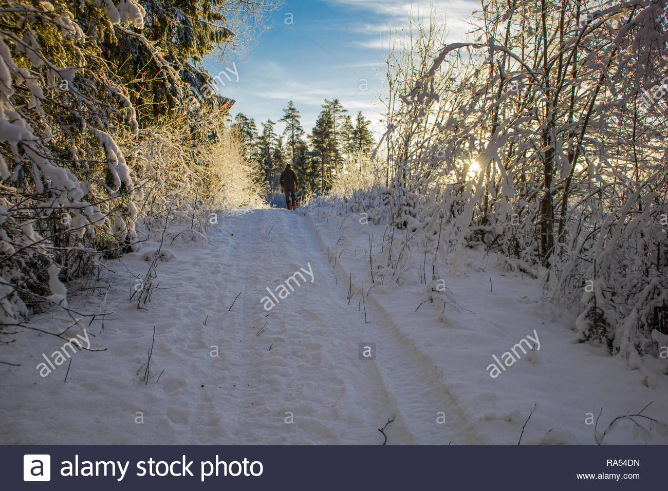 Winterwalk durch tiefen Schnee mit einem Mann und einem Hund Stockbild