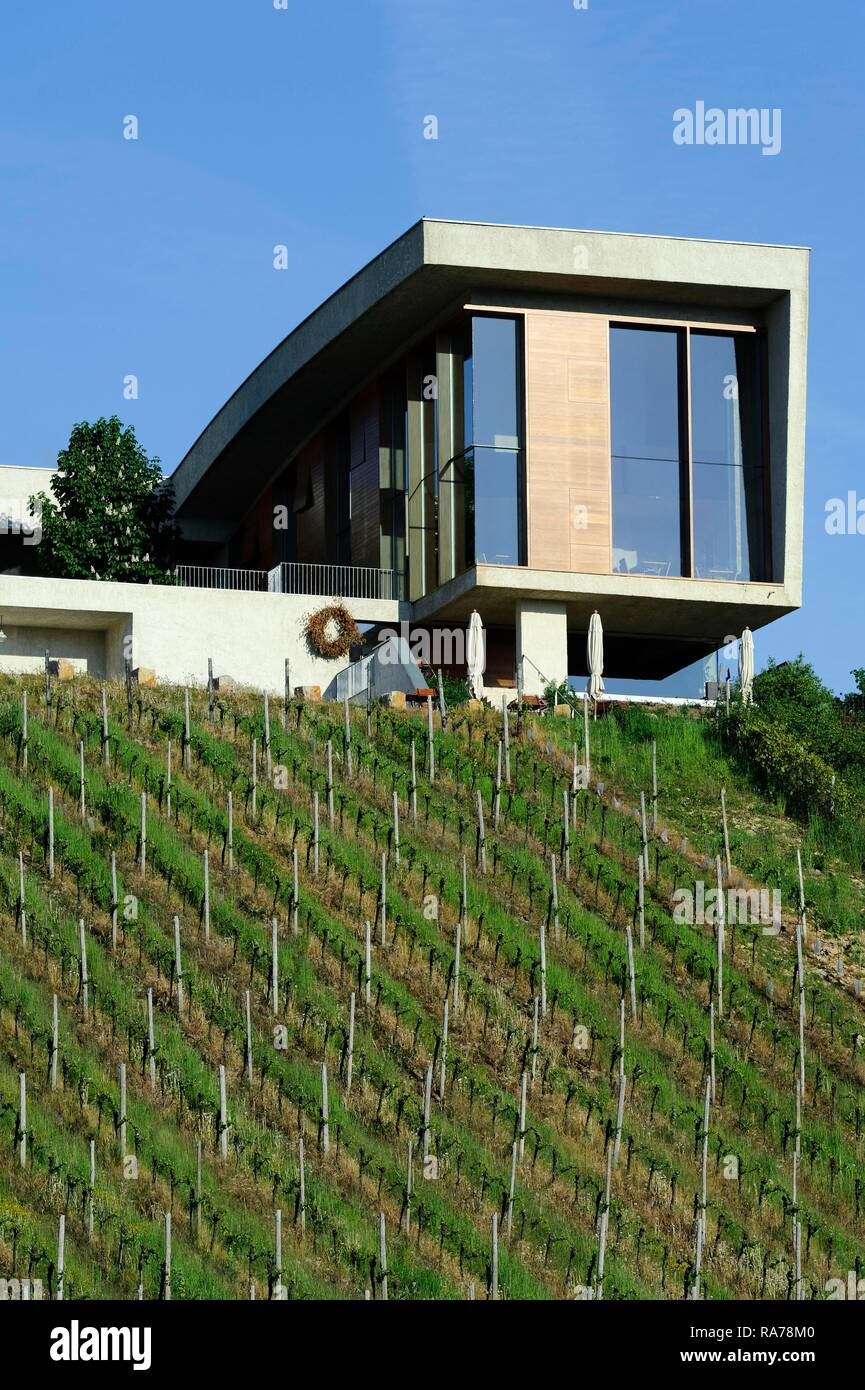 Henri ruppert weinkellerei auf markusberg berg in der n he remerschen geb ude vom architekten - Architekten luxemburg ...