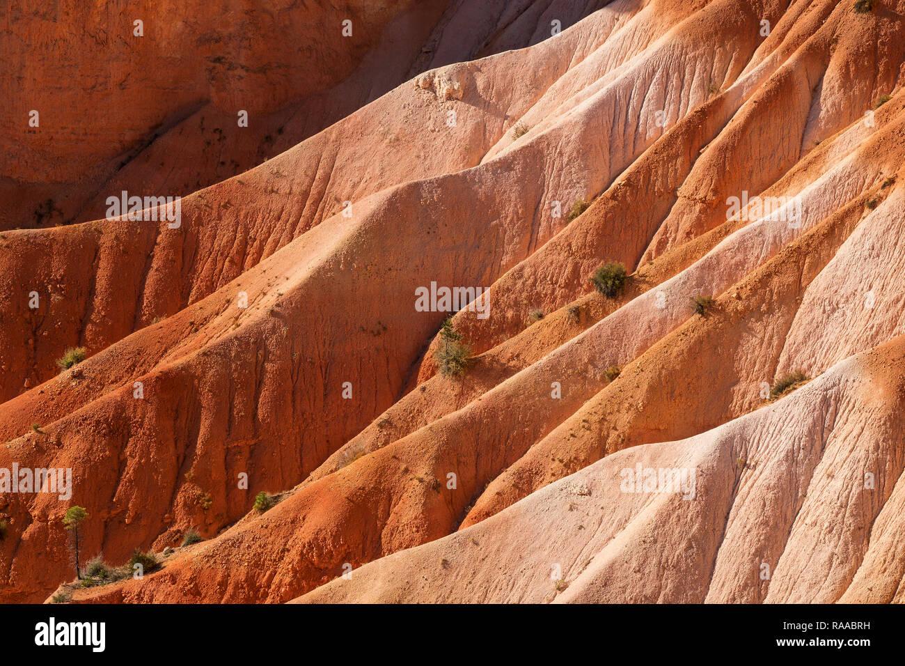 Bryce Canyon National Park, Utah, USA. Canyon Wände aus erodieren Sedimentgesteine Kalkstein. Stockfoto
